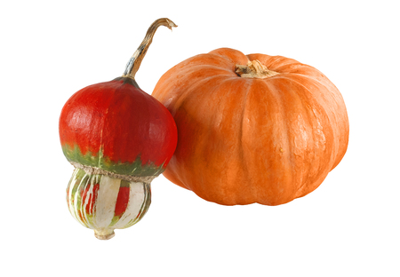Pair of decorative pumpkins isolated on a white background