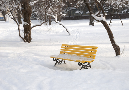 Yellow bench in the winter snowbound park Stock Photo