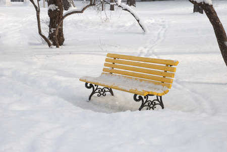 Yellow bench in the winter snow park