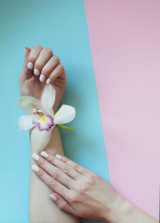 Beautiful gentle stylish female manicure on a pink and blue background. Womens well-groomed hands. Delicate orchid flower in the hands of a girl. The concept of spa salon, body care and hygiene.
