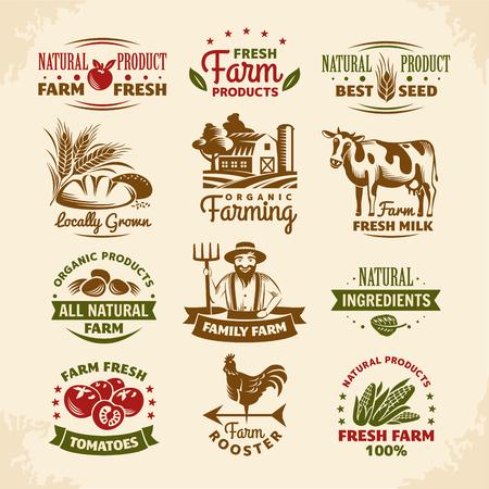 gallo: Granja del vintage etiquetas ilustración vectorial
