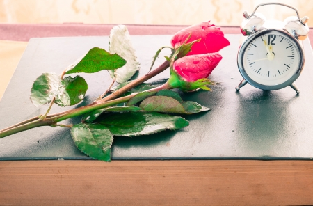 rose and old diary with clock  photo
