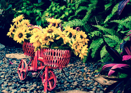 disign: Flower on bicycle for garden disign