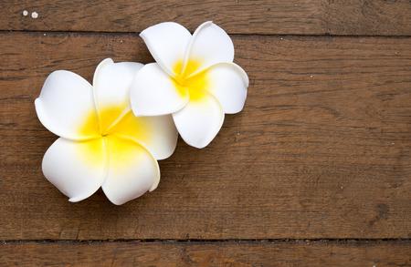 Plumeria Flower On Wooden Background Vintage Style Stock Photo   35155123