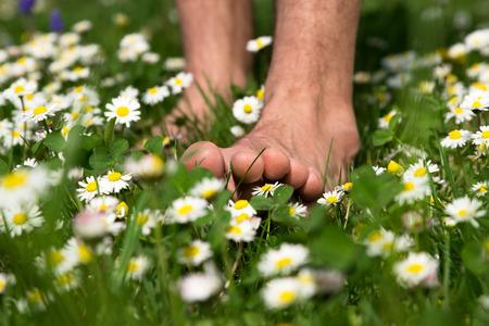 Letní chodit naboso přes louku plnou daysies Reklamní fotografie