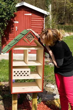 wintering: Woman examines a recently completed insect house