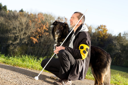 A guide dog takes care of his blind master Stockfoto