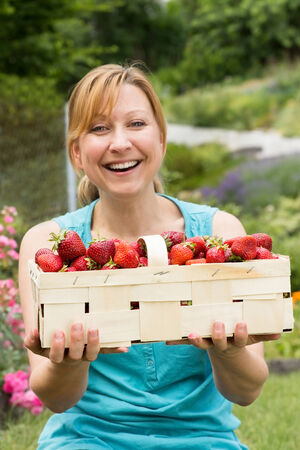 harvesters: Young attractive woman holding a basket filled with strawberries Stock Photo