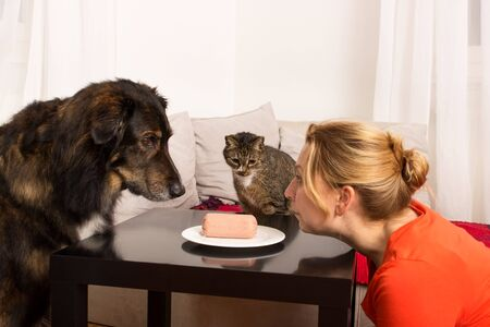 lurk: A woman sitting with a dog and a cat in front of a plate with sausage Stock Photo
