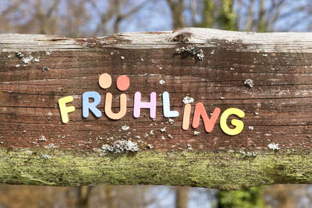 fever plant: Spring written in colorful letters on a wooden board Stock Photo