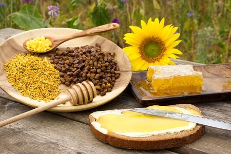 forest products: Bread with honey and other healthy bee products on a wooden table