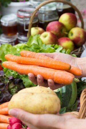 Close up of carrots and potatoes in the hands of a woman