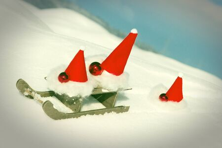 Three waddles have a lot of fun with sleding
