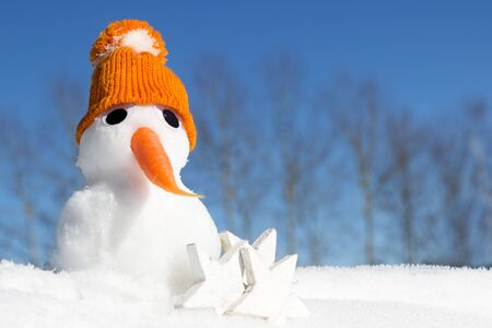 witty: A snowman with a knitted hat and a carrot as nose Stock Photo