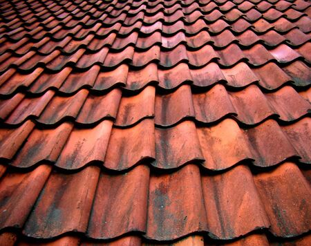 красноватый: Details of an old roof with reddish tiles.