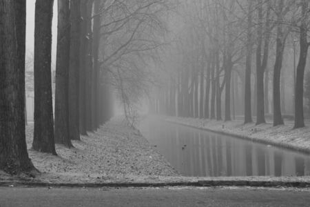 Foggy morning in a winter day-black and white tones, selective focus. Stock Photo - 4362103