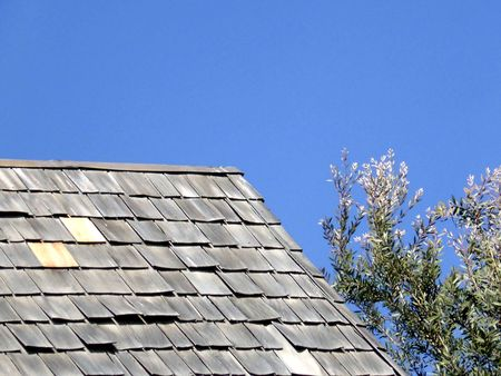 roof tile: On the roof