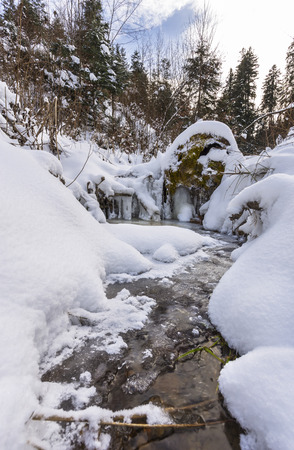rivulet: Frostcovered stream in the Oriental Carpathians