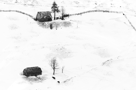 Animal shelters in the Romanian Carpathians on a winter day Фото со стока