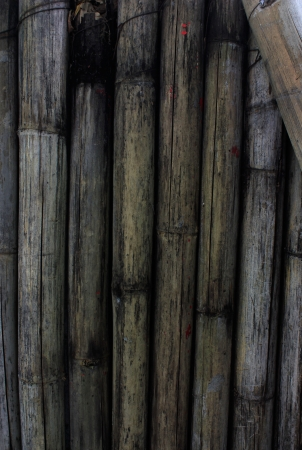 Old Bamboo background photo