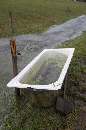 flooding: flooding