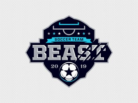 Modern professional emblem for soccer team. Ilustrace