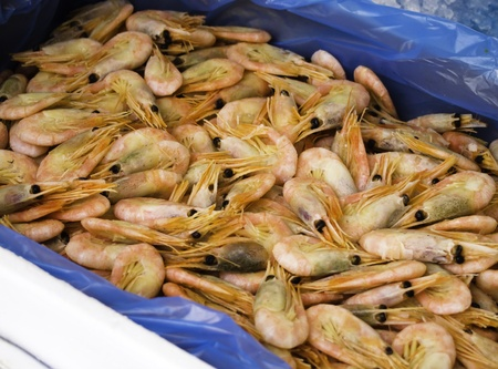 seafruit: fresh prawns in a market place Stock Photo