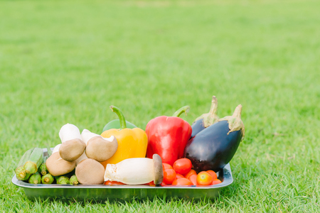 Fresh vegetable in silver plate on green grass in the garden Stock Photo