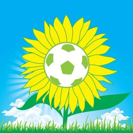 Sunflower soccer football Vector