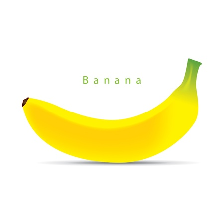 Ripe banana isolated on white  Vector