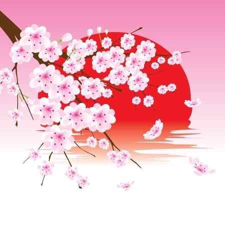 flores chinas: vector flor de cerezo rama en el sol rojo