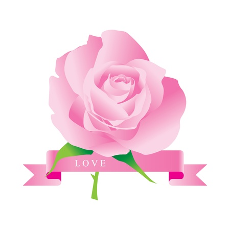rose vector. Stock Vector - 17521978
