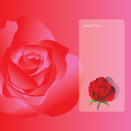 rose vector. Stock Vector - 17522093