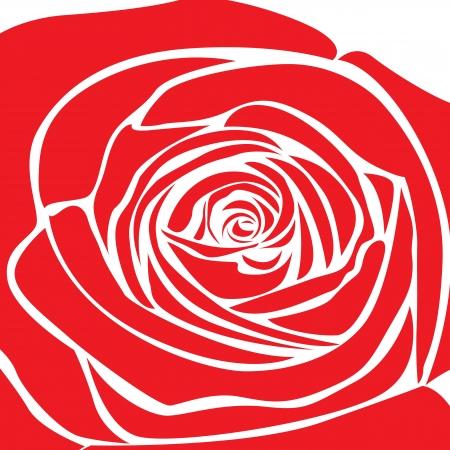 rose vector. Stock Vector - 17521983