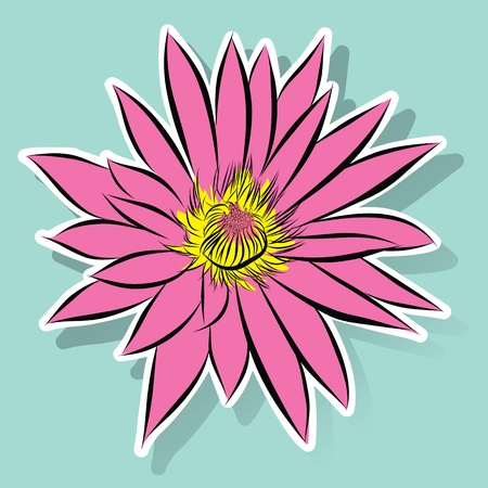 vector flower lotus Vector