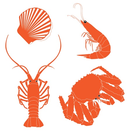 seafoods: Seafood: shrimp, crawfish, crab, Scallops