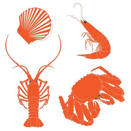 crayfish: Seafood: shrimp, crawfish, crab, Scallops