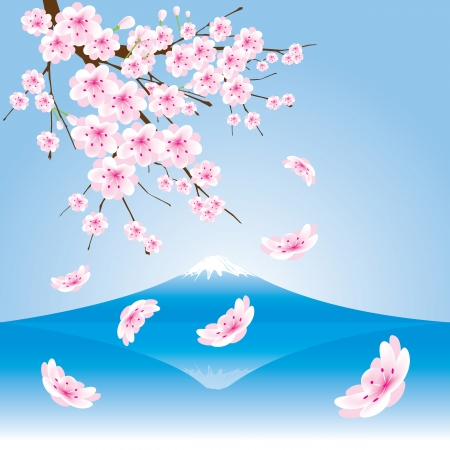The abstract of Fuji mountain  and Cherry blossoms vector