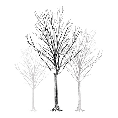 The abstract of Tree - Hand Drawn vector Vector