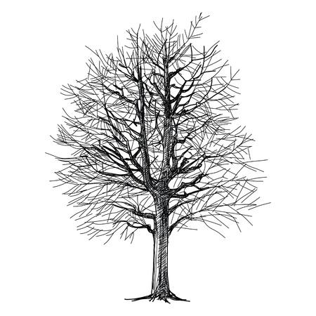El resumen del árbol de la mano - dibujado Foto de archivo - 21282859