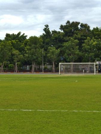 goalline: A vacant soccer goal  Stock Photo
