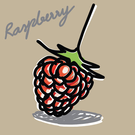 The abstract of raspberry hand - drawn Vector
