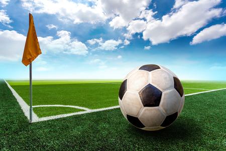 Soccer Field 免版税图像 - 29024156