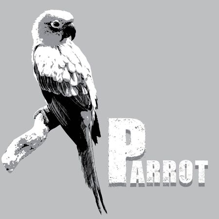 endangered: Parrot on a Tree Branch vector, rubber stamp