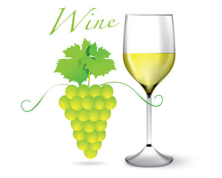 reflection of life: Glass of White Wine and Grape. Vector