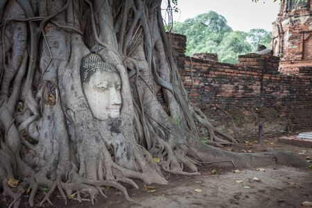 unseen: Unseen of Buddha head in root tree at Wat Mahathat. Ayutthaya historical city, Thailand