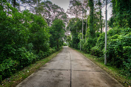 mood moody: Country road in Thailand