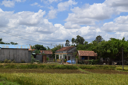 paddy field and traditional brick houses in rural village in Vietnam countryside