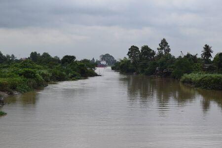 tropical shrub: tropical river with two side full of plant shrub
