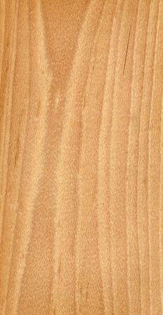 wood Stock Photo - 2479033